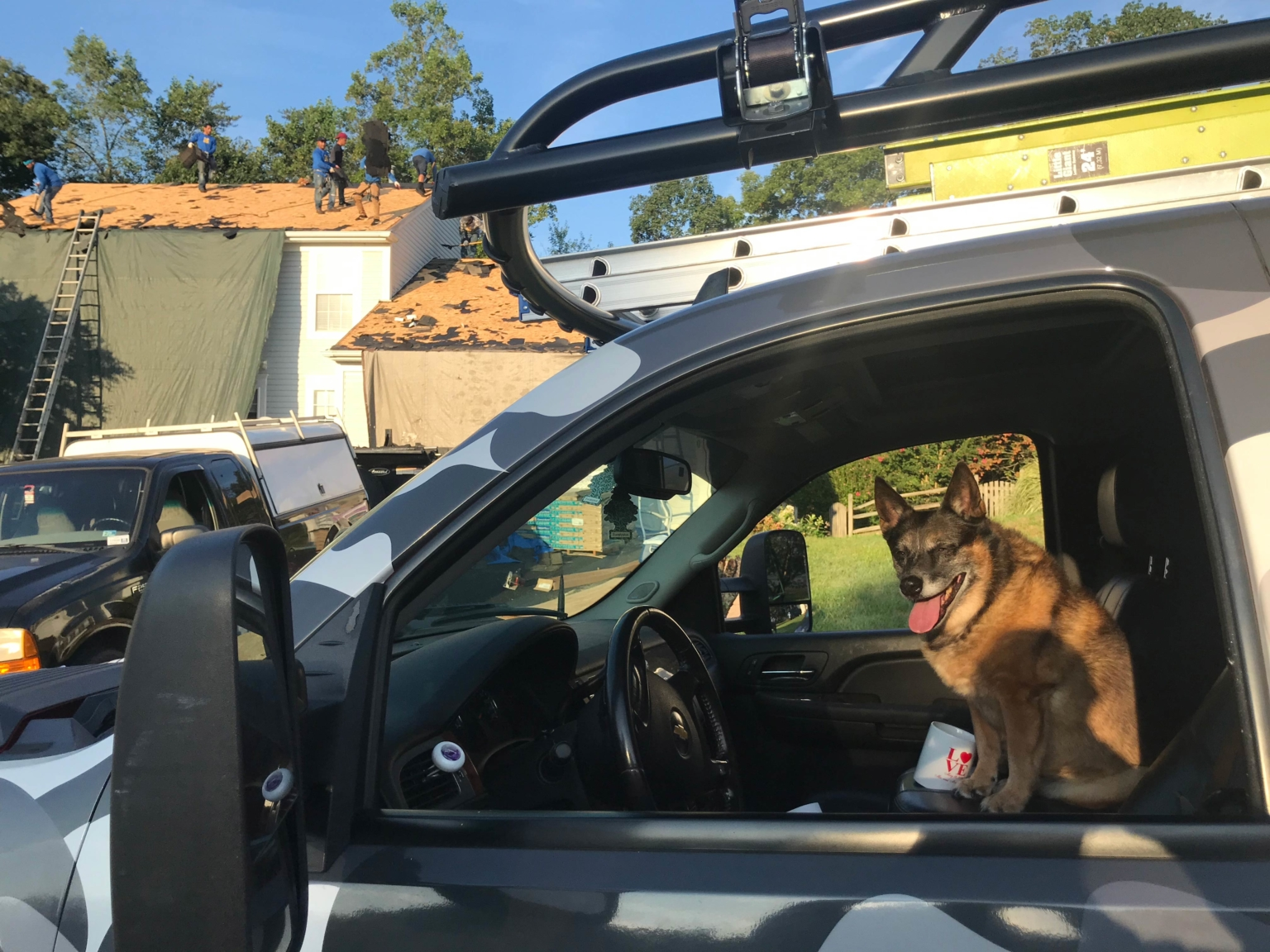 Top Dog Home Pro Roofing Installation - Dog in the Truck