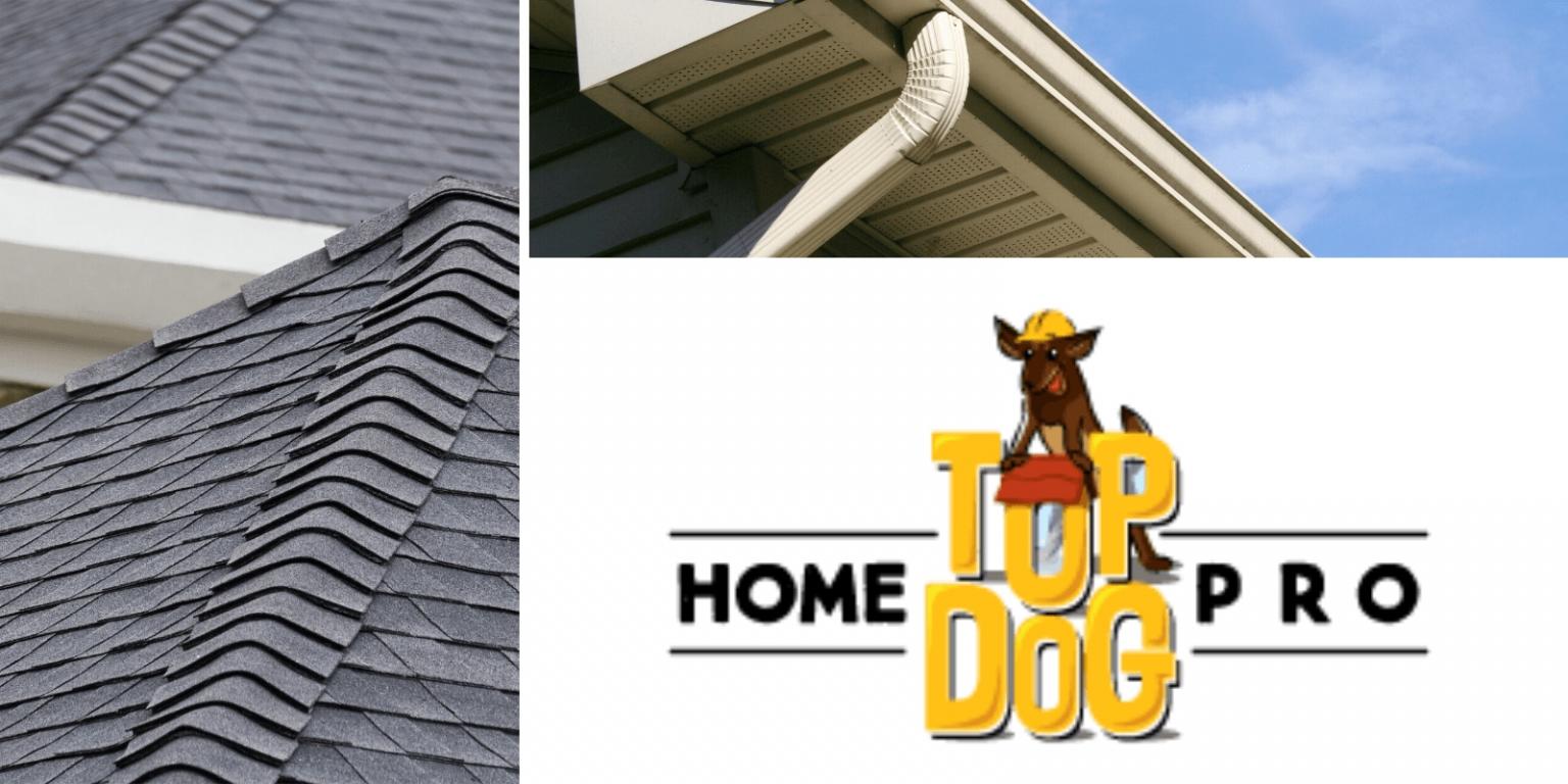 roofing and gutters near me